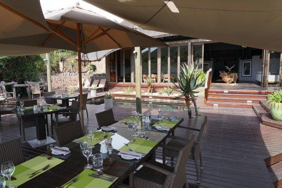 Shamwari Game Reserve Lodges: Bayethe Lodge