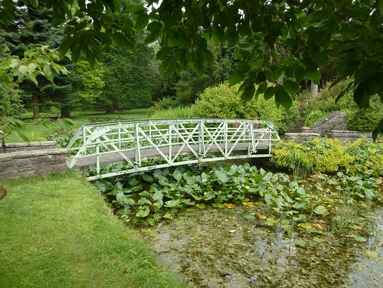 National Botanic Gardens: A Bridge Over The Lily Pond