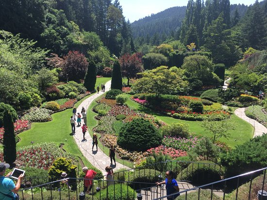 Butchart Gardens Photo