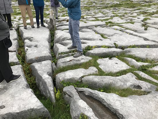 Corofin, Irlanda: Typical surface