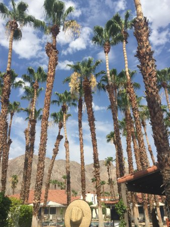 La Quinta, Καλιφόρνια: photo3.jpg