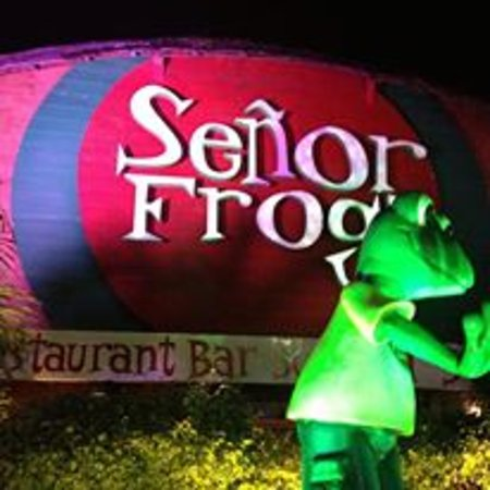 Senor Frogs Cancun Restaurant Reviews Phone Number