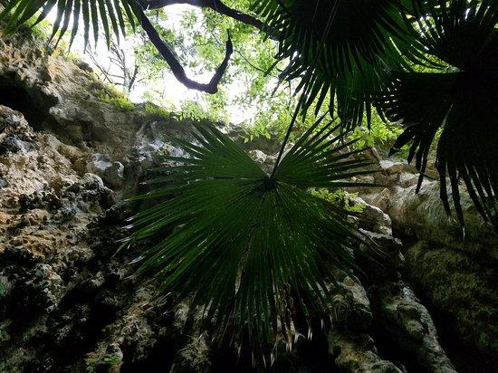 Hamilton Parish, Islas Bermudas: A great adventure!