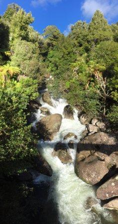 Taupo, Yeni Zelanda: Roaring river