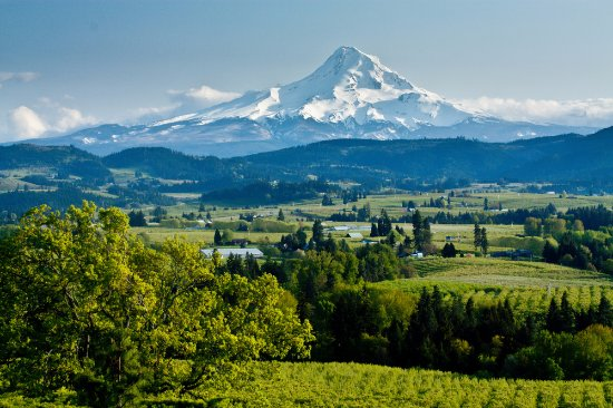 Hillsboro, Oregón: Spectacular View of Mount Hood