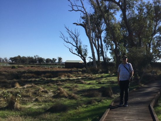 Busselton, Australia: Paths are even and a boardwalk for easy access. There are no toilets at this spot.