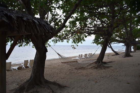 Malolo Island Resort: photo3.jpg