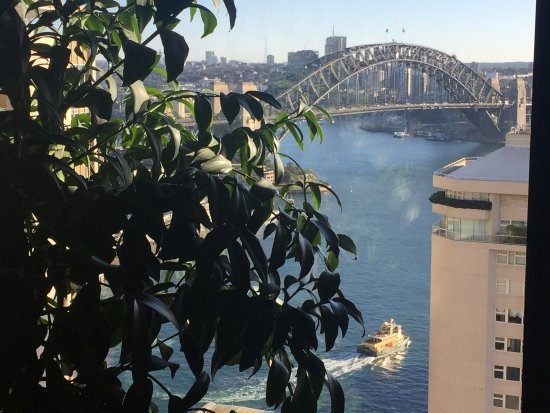 InterContinental Sydney: photo0.jpg