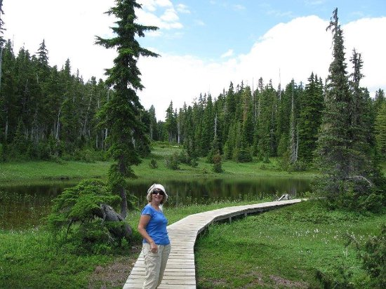 Mount Washington Resort Mile High Chairlift: Paradise Meadows hike