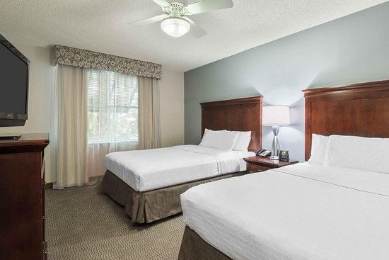 suite picture of homewood suites tampa airport westshore tampa