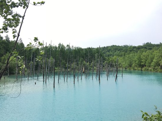 Blue Pond : photo1.jpg