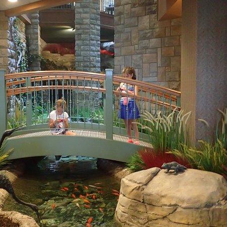 Chateau on the Lake Resort & Spa: kids enjoying the koi