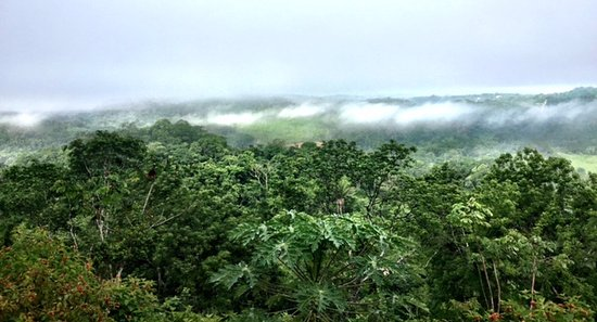 Santa Elena, Belice: Morning view above the clouds!