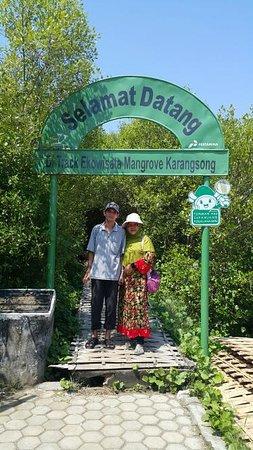 Indramayu, إندونيسيا: gerbang masuk trek di kawasan hutan mangrove Karangsong