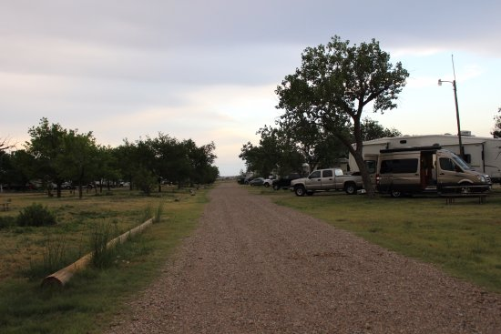 Tucumcari KOA : RV spots