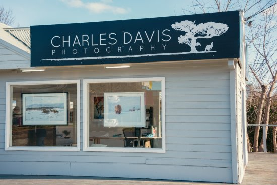 Charles Davis Photography Gallery