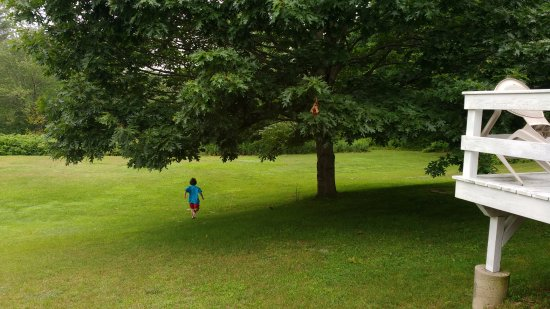 White Anchor Inn: Great grassy area for running out energy (and an apple tree at the edge of the woods).