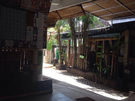 Serenity Eco Guesthouse and Yoga: photo0.jpg