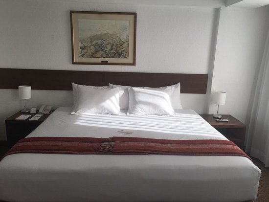 Tierra Viva Arequipa Plaza Hotel: IMG-20170715-WA0037_large.jpg