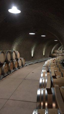 Helwig Vineyards & Winery : Fun & Informative