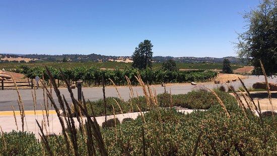 Helwig Vineyards & Winery : Scenic