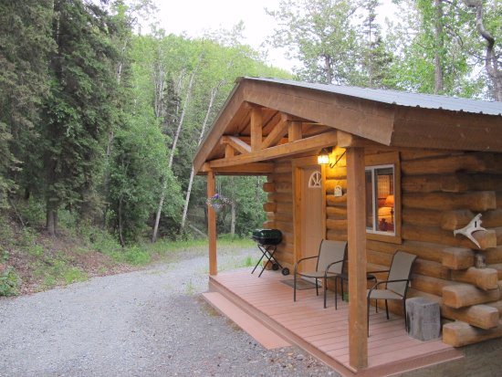 Glacier View, AK: cozy cabin
