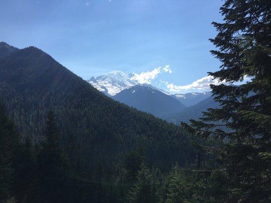Mount Rainier: photo4.jpg