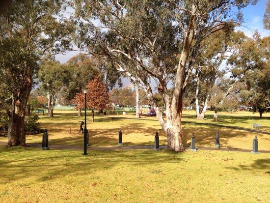 Cootamundra, Australia: photo0.jpg