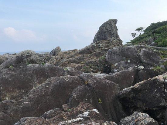 Muroto, Japón: photo0.jpg