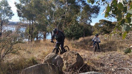 จินดาไีบน์, ออสเตรเลีย: Mountain Bike hire $15 an hour or $25 a day - great fun