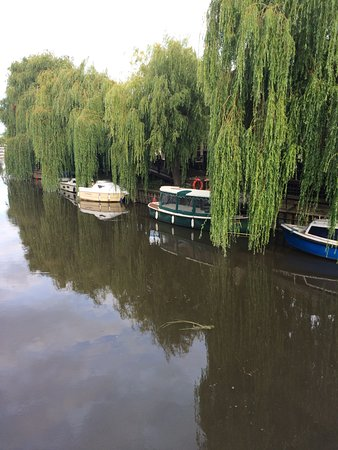 Upstreet, UK: View from the other side of the River Stour (our balcony was behind the trees)