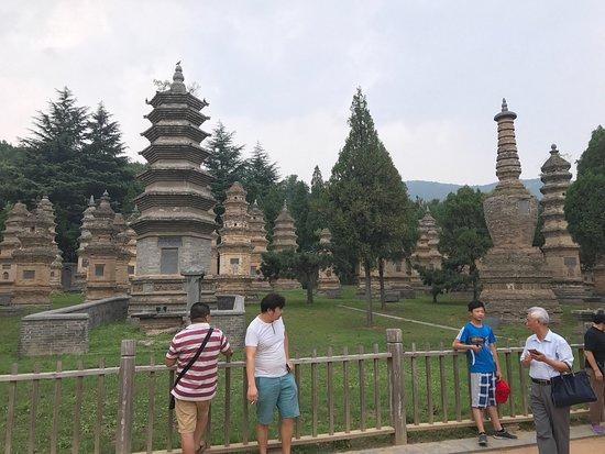Pagoda Forest of Shaolin Temple: photo4.jpg