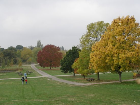 Chelmsford Foto