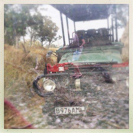 Maun, Botsvana: More jeep porn