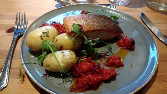 Kilve, UK: Pan fried salmon with olive and tomato sauce