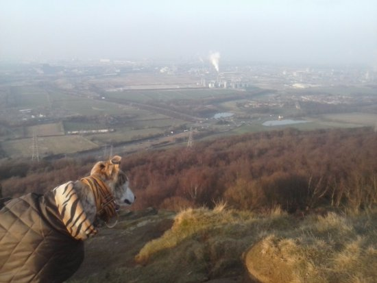 Middlesbrough, UK: the view