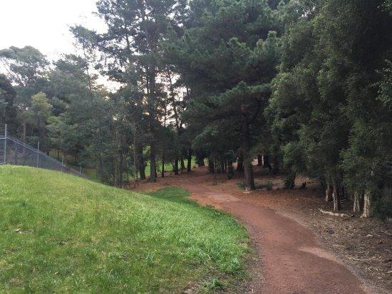 Mahon Reserve