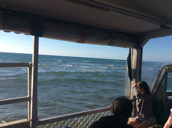 Seventeen Seventy, أستراليا: View along the shoreline entering into the ocean