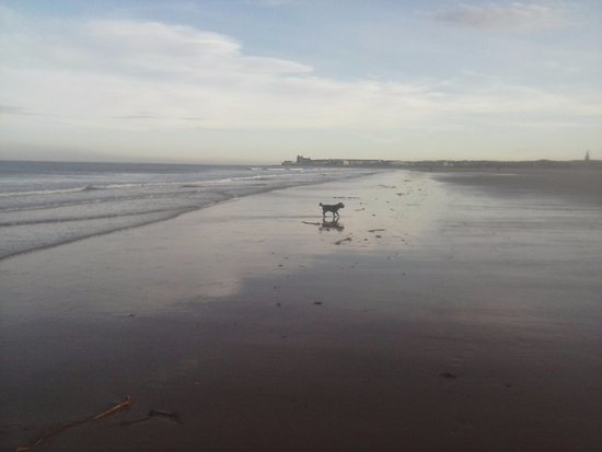 Redcar in the distance