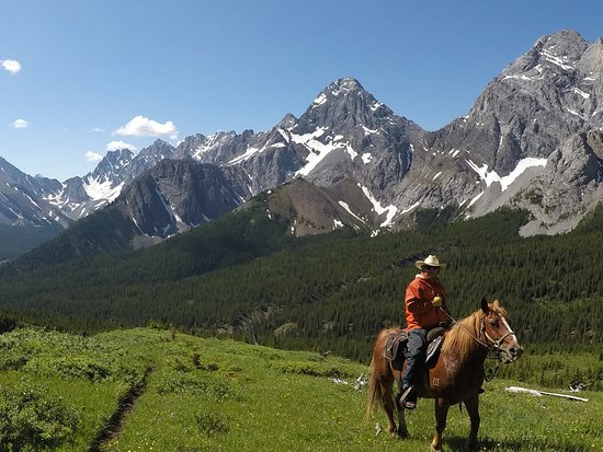 Bragg Creek, Canada: My steed Fergie and the beautiful mountains