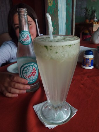 Nuevo Arenal, Costa Rica: El fresco de limón con menta recién recogida super refrescante