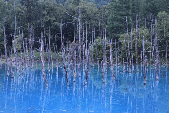 Blue Pond : photo0.jpg