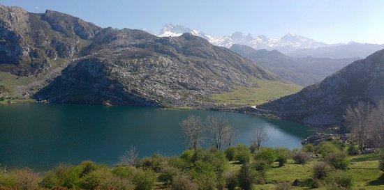 Sierra de Aracena and Picos de Aroche Natural Park Picture
