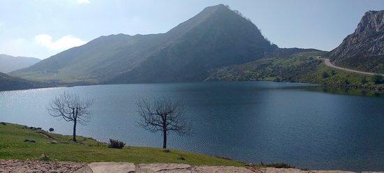 Sierra de Aracena and Picos de Aroche Natural Park Resmi