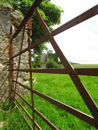 Clifden, Irlanda: Gate near the back