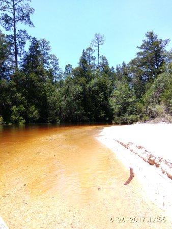 Blackwater River State Recreation Area: Beaches, beaches, beaches...