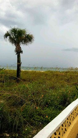 A Beach Retreat on Casey Key: photo1.jpg