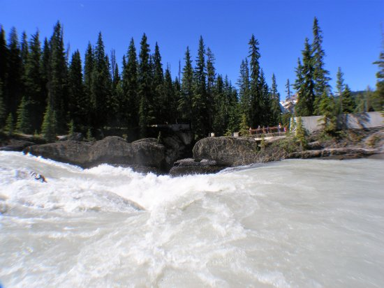 Field, Canada: Feel the force of The Kicking Horse River.