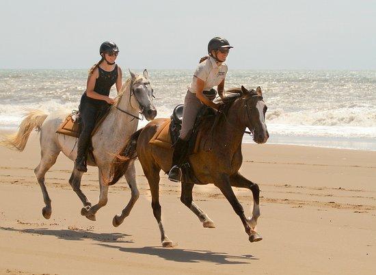 St Lucia, Republika Południowej Afryki: Beach ride with Bhangazi Horse Safaris