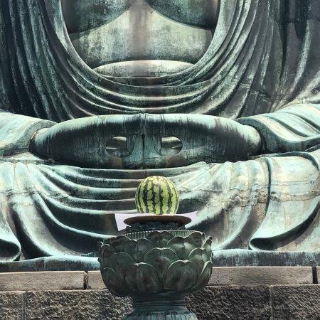 Kamagaya, Japon : photo1.jpg